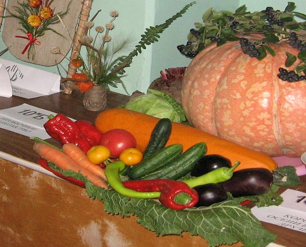 Органический удобрения для цветов